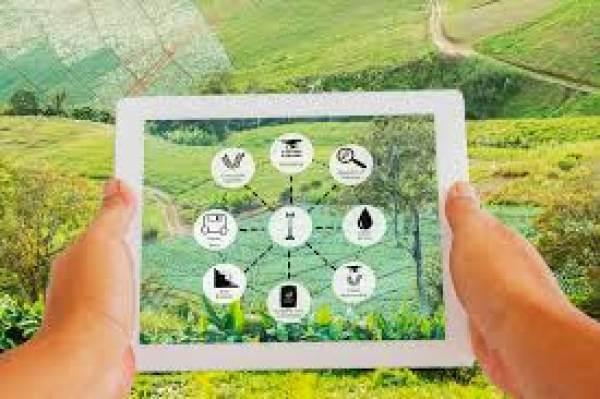 Agrifood Monitor, così l'innovazione porta allo sviluppo sostenibile