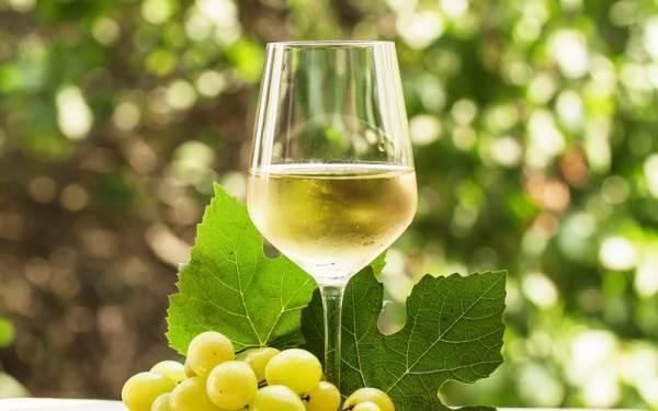 Boom dei vini marchigiani in gdo