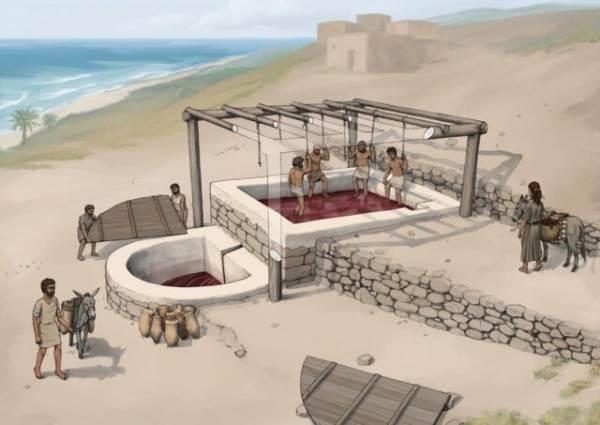 Scoperto in Libano il più antico torchio per il vino (VII secolo a.c.)