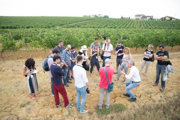 Per Collisioni non solo Langa: giornalisti ed esperti internazionali alla scoperta dei vini nobili del Monferrato
