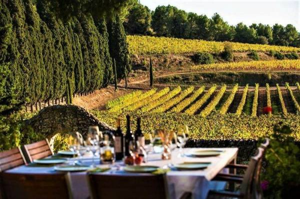 """Vino e turismo, il successo è """"locale e naturale"""""""