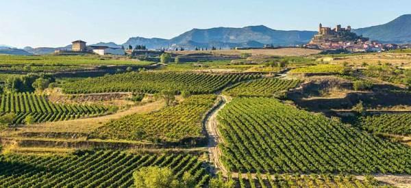 La Rioja vuole lo spumante, richiesta alla Ue la modifica del disciplinare