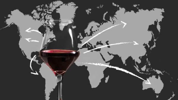Flessibilità Ocm vino: la filiera chiede proroga per la presentazione varianti