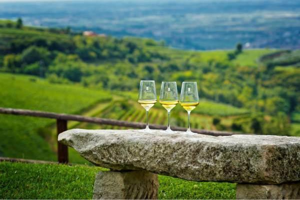 Il Soave finanzia un nuovo progetto sullo studio della shelf life del vino