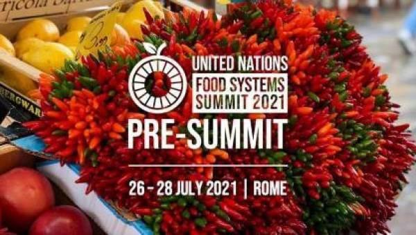 Patuanelli al pre-vertice Fao: più dieta mediterranea e etichetta trasparente