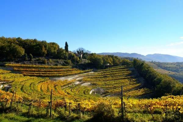 Il Veneto vuole la Valpolicella patrimonio Unesco