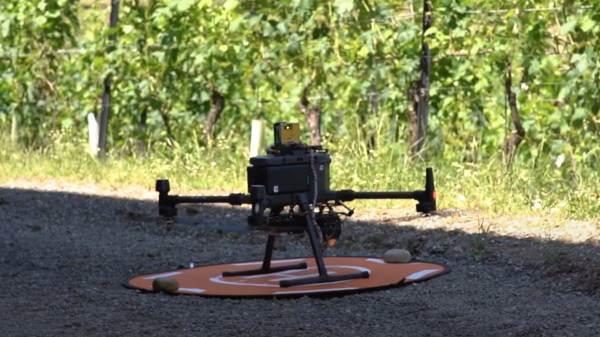Noviagri, partono le sperimentazioni in vigna del progetto sulla viticoltura sostenibile