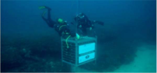 """Approda alla Camera la """"guerra"""" dello champagne sottomarino a Portofino"""