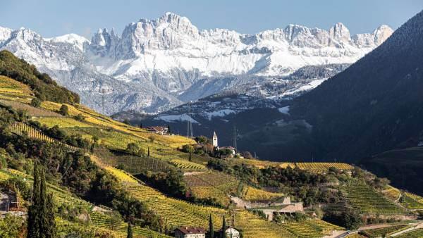 Consorzio Vini Alto Adige, a settembre un roadshow in 8 città
