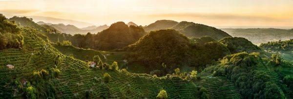 Le Colline di Conegliano e Valdobbiadene sono Patrimonio Unesco