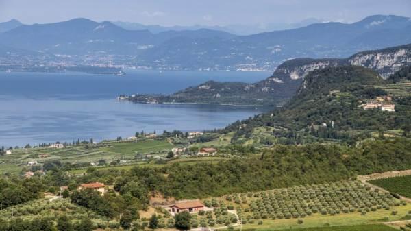 Bardolino: istituite le sottozone Montebaldo, La Rocca e Sommacampagna
