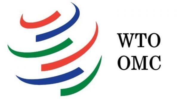 Riforma Omc: le proposte Ue sul funzionamento dell'organo di appello