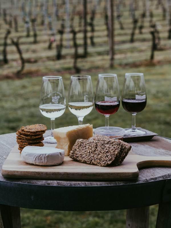 Studio decennale afferma che formaggi e vino potrebbero ridurre i rischi di sviluppare l'Alzheimer