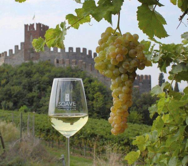 Il Soave è patrimonio dell'umanità per l'agricoltura: è il primo legato alla viticoltura