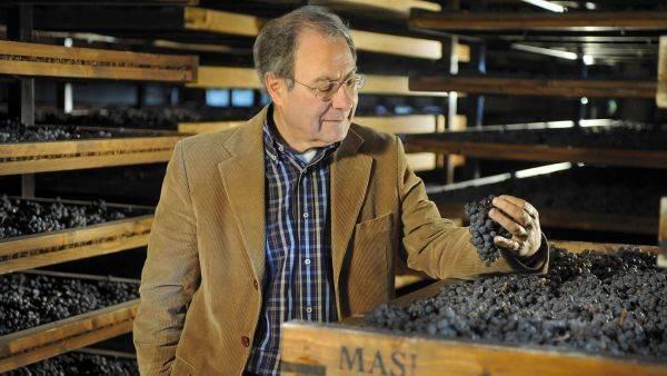 """Boscaini: """"Una visione strategica per il vino italiano che superi denominazioni e territori"""""""
