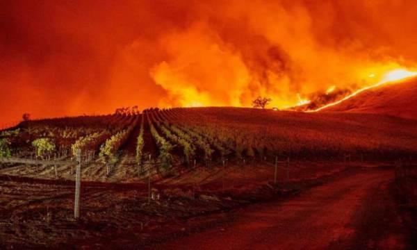 California: gli incendi distruggono 18 cantine in Napa Valley
