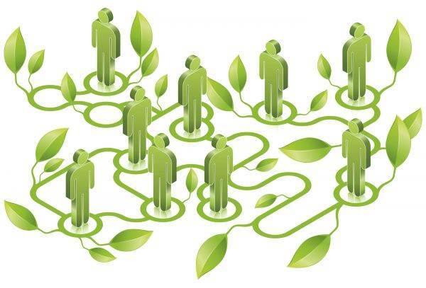 Reti d'impresa: nell'agroalimentare coinvolte 4.600 aziende