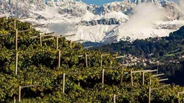 Food & Wine Tourism Forum: le sfide del turismo enogastronomico al tempo del Covid