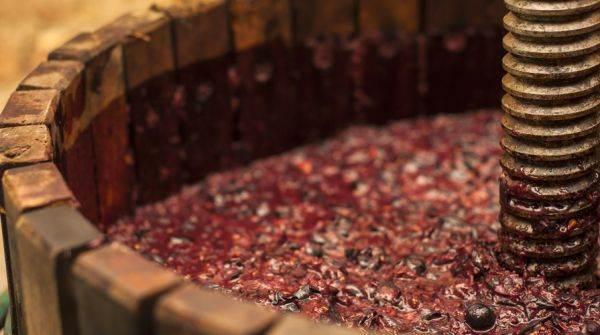 Dichiarazioni di giacenza vini e mosti al 31 luglio 2018