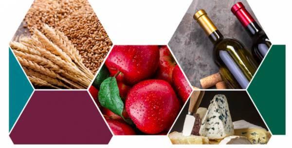 Ismea: le prospettive del mercato del vino negli scenari post Covid