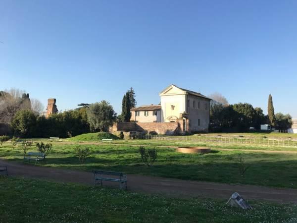 Nel 2025 i primi vini del Colle Palatino a Roma