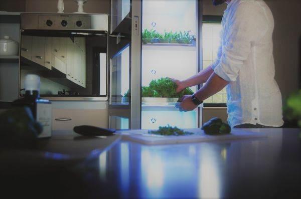 Aromi freschi per il cocktail? Si coltivano direttamente in cucina con l'idroponica