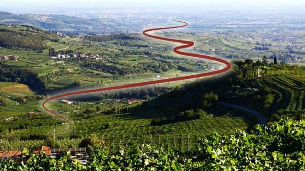 Cammino del Bardolino, 100 km tra vigneti e natura