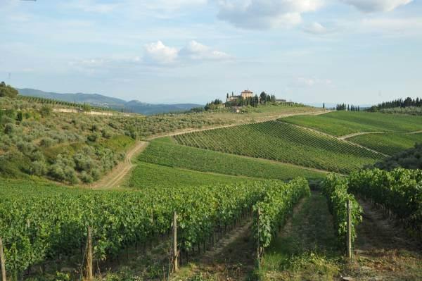 Regione Toscana a fianco del Chianti Classico per la candidatura del Paesaggio a Patrimonio dell'Umanità