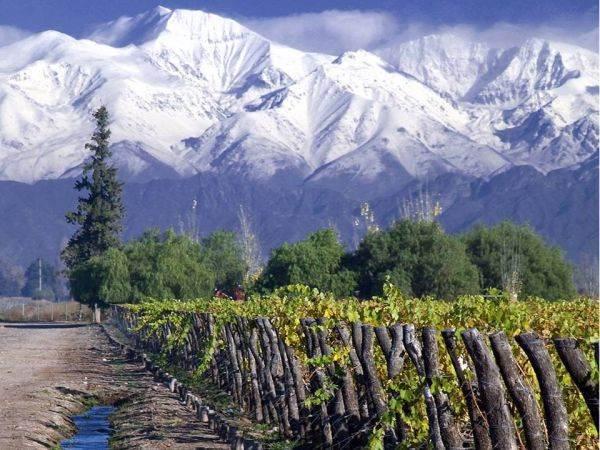 Il Cile guadagna quattro nuove denominazioni d'origine