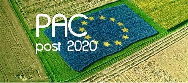 Riforma Pac: deciderà il nuovo Parlamento europeo