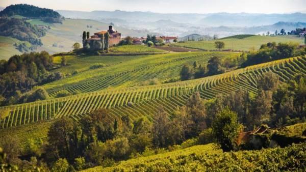 """""""Solo Autoctoni"""", il nuovo programma che  promuove il Monferrato"""